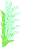 De lentekader met lelietje-van-dalen 2 vector illustratie