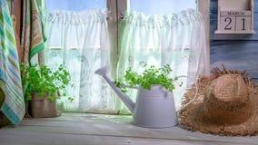 De lentekeuken in volledige zon Stock Fotografie