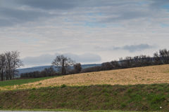 De lenteland in de vroege bewolkte ochtend Stock Fotografie