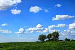 De lentelandschap Stock Foto