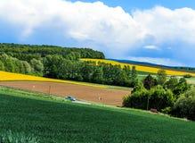 De lentelandschap Royalty-vrije Stock Afbeeldingen