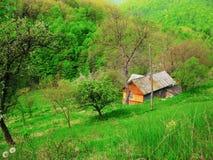 De lentelandschap in de bergen, groen bos royalty-vrije stock afbeelding