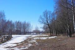 De lentelandschap in het platteland Stock Foto