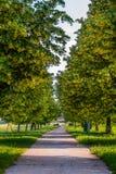 De lentelandschap, lindesteeg, voetpad in aardpark, Slovenska Bistrica royalty-vrije stock foto's