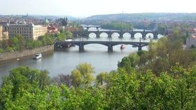 De lentelandschap met de bruggen van Praag Praag, Tsjechische Republiek stock videobeelden