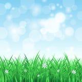 De lentelandschap met gras en hemel Royalty-vrije Stock Foto