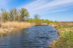 De lentelandschap met kleine rivier stock foto's