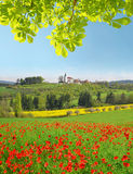 De lentelandschap met rood papavergebied Royalty-vrije Stock Afbeelding