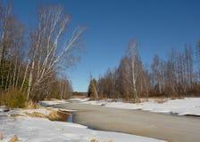 De lentelandschap op de rivier met smeltend ijs en bomen op de kust Stock Foto