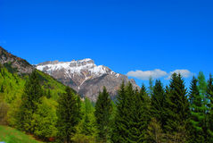 De lentelandschap van de berg. Stock Foto