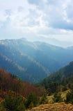 De lentelandschap van de bergen van de Kaukasus met pieken door bos worden behandeld dat Royalty-vrije Stock Foto