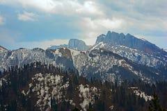 De lentelandschap van de bergen van de Kaukasus met pieken door sneeuw worden behandeld die Stock Afbeeldingen