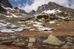 De lentelandschap van de panoramaberg Stock Afbeelding
