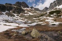 De lentelandschap van de panoramaberg Royalty-vrije Stock Foto's