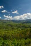 De lentelandschap van het Uitlopersbrede rijweg met mooi aangelegd landschap Stock Foto's