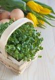 De lentelijst van Pasen, witte waterkerssalade, tulpenbloemen, eieren Royalty-vrije Stock Foto's