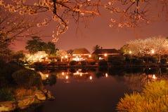 De lentenacht Royalty-vrije Stock Afbeeldingen