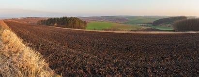 De lenteochtend bebouwbare en de groeigebieden en platteland royalty-vrije stock foto's