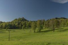 De lenteochtend in Varnsdorf-gebied Royalty-vrije Stock Afbeeldingen
