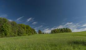De lenteochtend in Varnsdorf-gebied Stock Foto