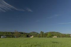 De lenteochtend in Varnsdorf-gebied Stock Foto's