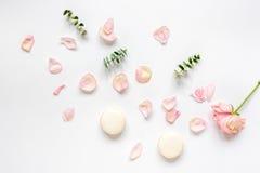 De lentepatroon met makarons en bloem in zachte lichte hoogste mening Stock Afbeeldingen