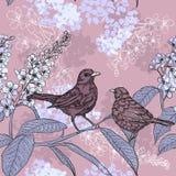 De lentepatroon met vogels op een bloeiende tak royalty-vrije illustratie