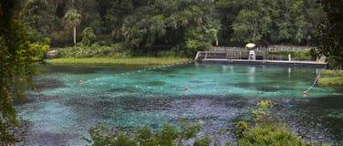 De Lentes van de regenboog - het Zwemmen Gebied Stock Foto's