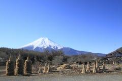 De lentes van Mt.Fuji Stock Afbeeldingen