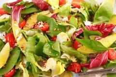 De lentesalade stock foto's