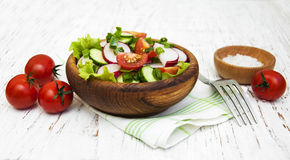 De lentesalade met tomaat, komkommers en radijs Stock Afbeeldingen