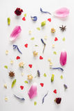 De lentesamenstelling met diverse bloemen, anijsplantsterren en harten op wit Stock Fotografie