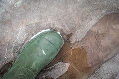 De de lenteschoenen met een moeras niet wordt nat in het water stock afbeeldingen