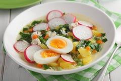 De lentesoep met spinazie, radijs, en eieren stock afbeeldingen