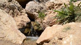 De lentestromen onder Stenen stock video