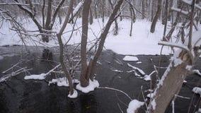 De lentestroom van de smeltende sneeuw, de rivierbank omvat met ijs en sneeuw, vloed in het bos in de lente stock video