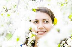 De lentetijd Royalty-vrije Stock Afbeeldingen