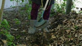De lentetuin het schoonmaken Tuinman die met harkbladeren harken in binnenplaats stock footage