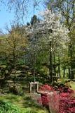 De lentetuinen Royalty-vrije Stock Afbeelding