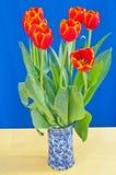 De lentetulpen Stock Foto's