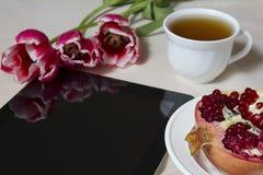 De lentetulpen en granaatappel op een Desktop Royalty-vrije Stock Fotografie