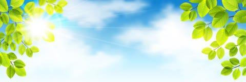 De lentevector Stock Foto's