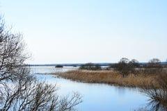 De lentevloed van de rivier op het gebied Royalty-vrije Stock Fotografie