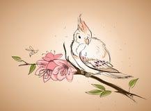 De lentevogel Royalty-vrije Stock Foto