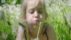 De lentevreugde - mooie meisjes blazende paardebloem Mooi leuk meisje in zonnige dag bij groene aardachtergrond stock video