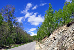 De lenteweg stock foto's