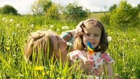 De lenteweide #22 Stock Afbeeldingen