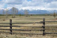 De lenteweiland in de Tunkinskaya-vallei bij de voet Sayan-Bergen, Buryatia Stock Afbeeldingen