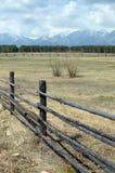 De lenteweiland in de Tunkinskaya-vallei bij de voet Sayan-Bergen, Buryatia Stock Foto