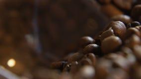 De lepel van koffiebonen stock videobeelden